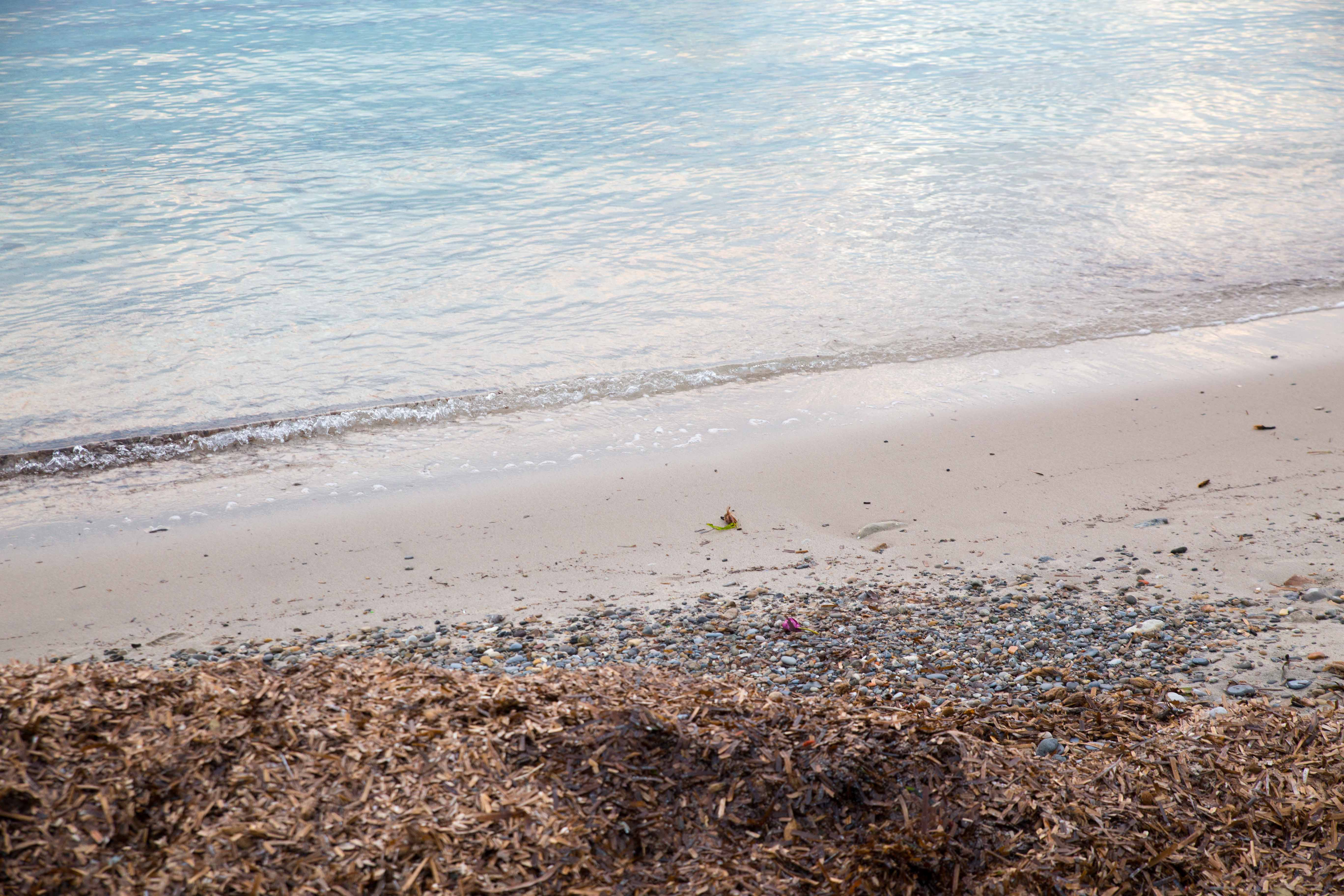Photographing-plage-des-ondes